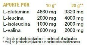 BCAA + GLUTAMINA CONCEPT 500 grs.